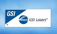 GSI_logo.jpg
